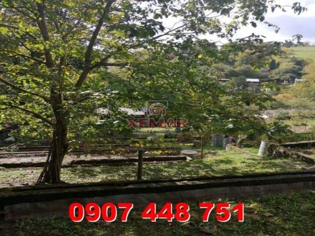 Záhrada 415m2